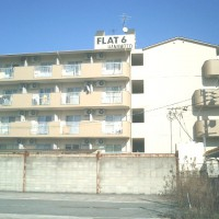 FLAT6 花元